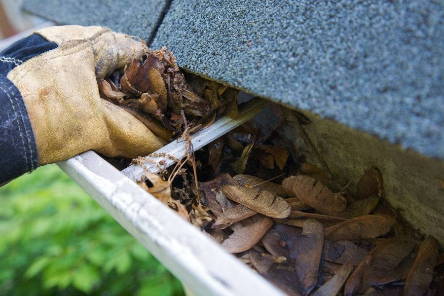 What To Do When You Have a Gutter Not Draining?