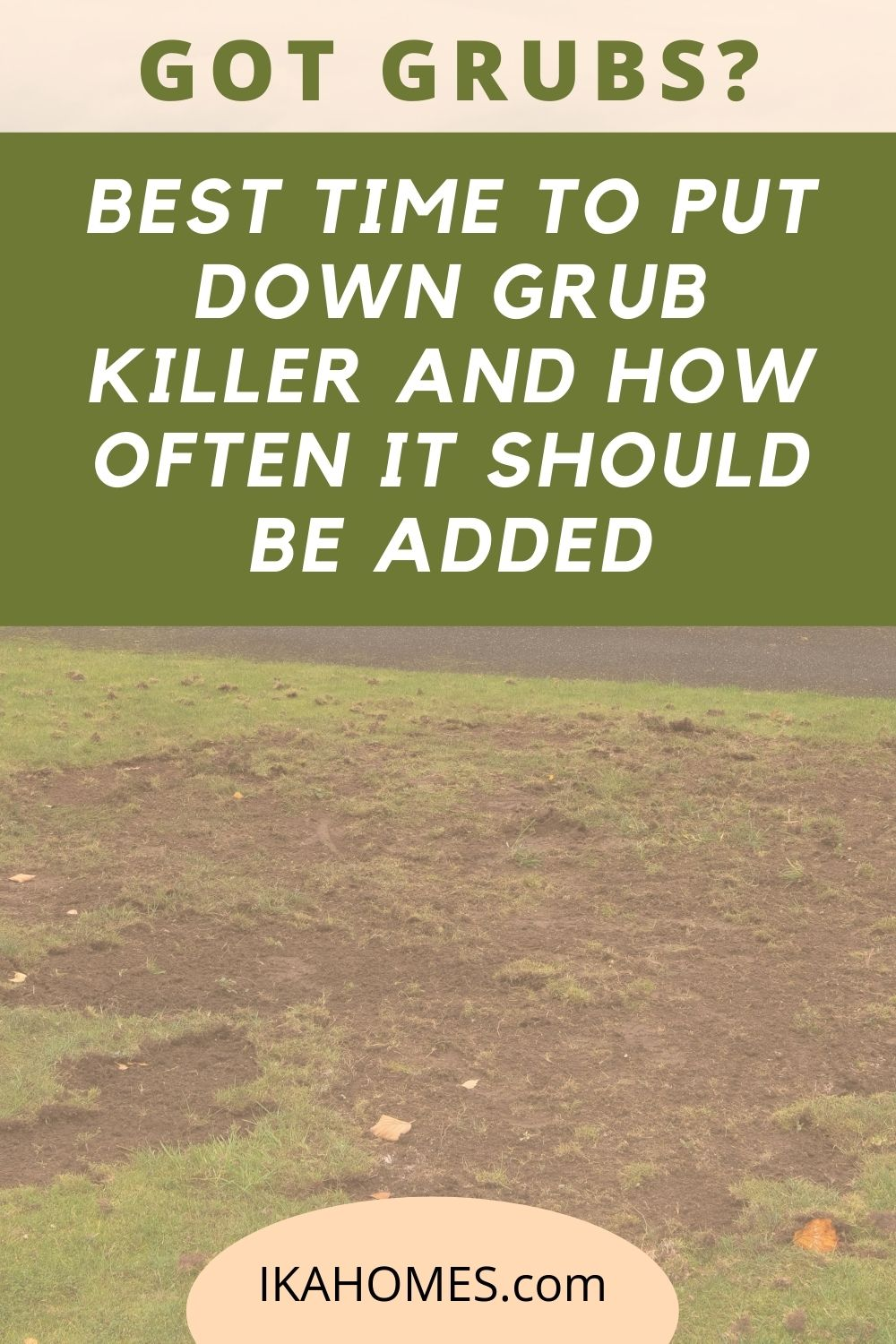 Best Time to Put Down Grub Killer and How Often it Should Be Added