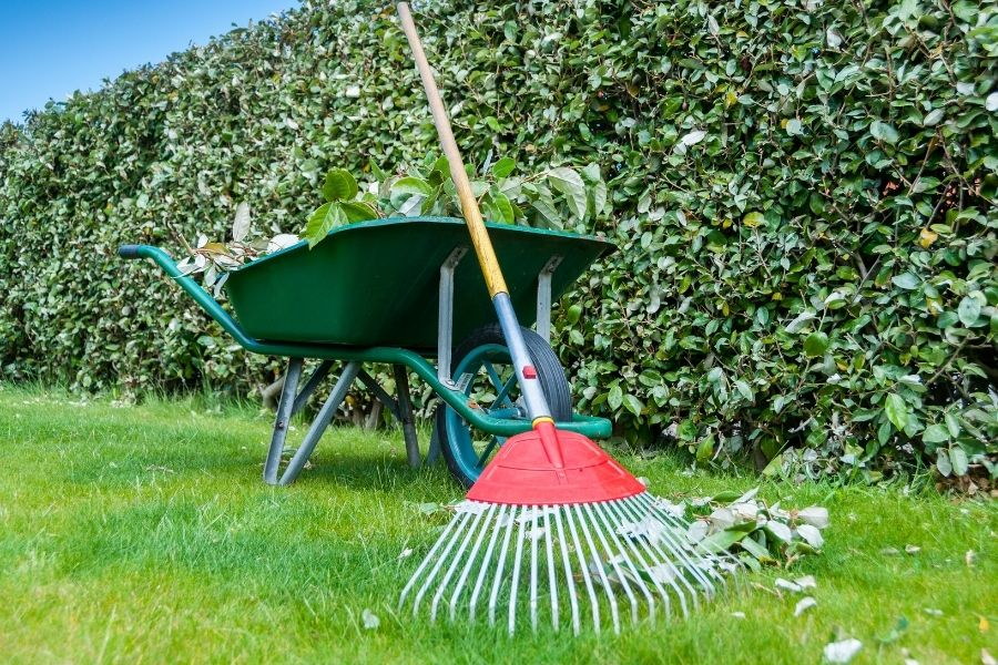 Costs of Lawn Care