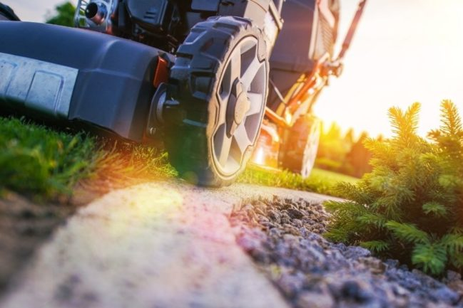 Lawn Care vs Landscaping