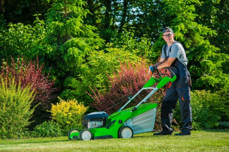 Lawn Care vs. Landscaping: What is the Difference?