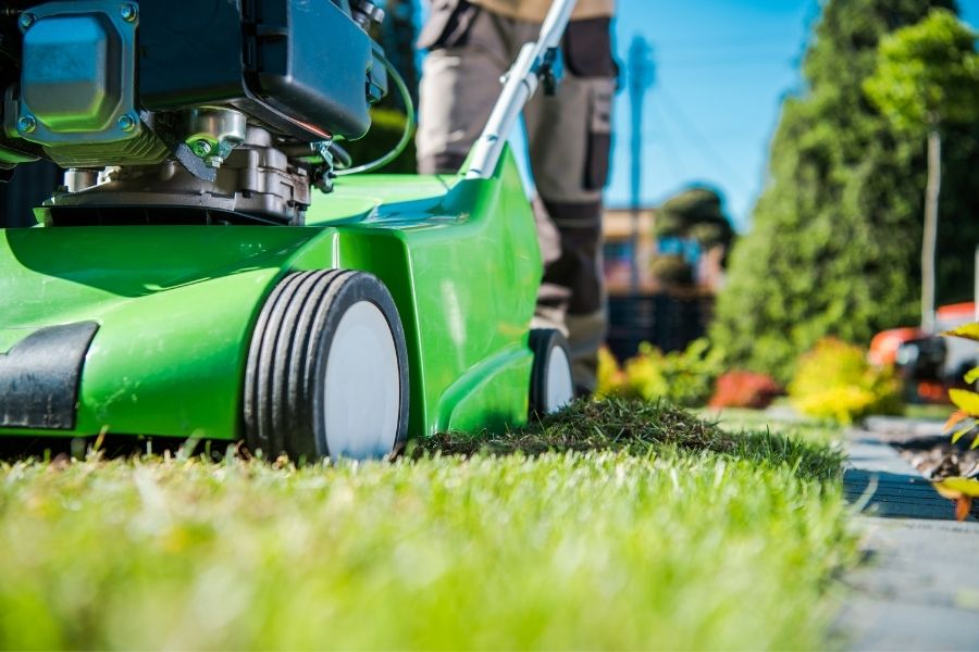 The Benefits of Lawn Care